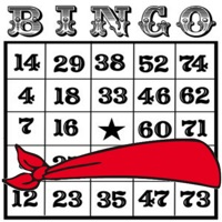 Codes for Blindfold Bingo Hack