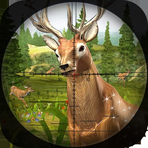 Hunting Season : Time Diaries