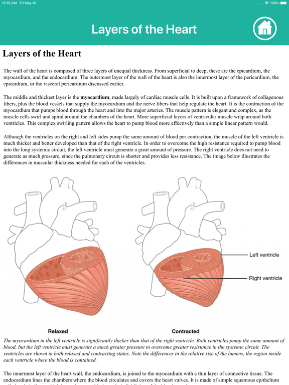 Learn Heart Anatomy screenshot 18