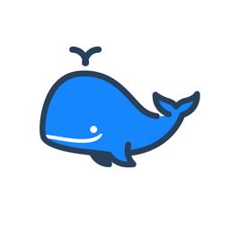 WhaleBlue VPN