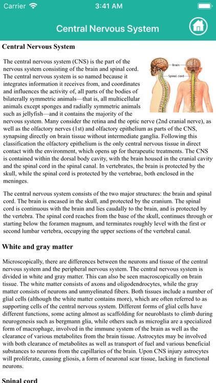 Human Anatomy : Nervous System screenshot-3