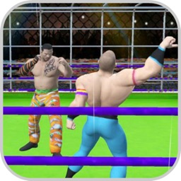 Wrestling Cage Fightings