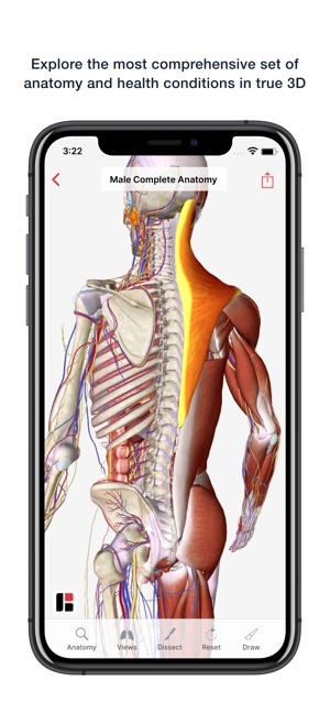 BioDigital Human 2019 on the App Store