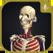 3D運動解剖学 teamLabBody