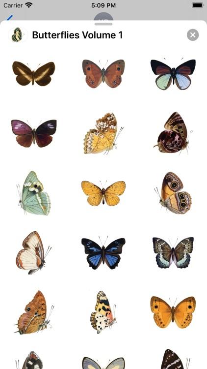 Butterflies Volume 1
