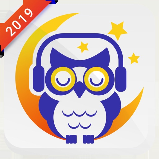White Noise - Sleeper Owl:2019