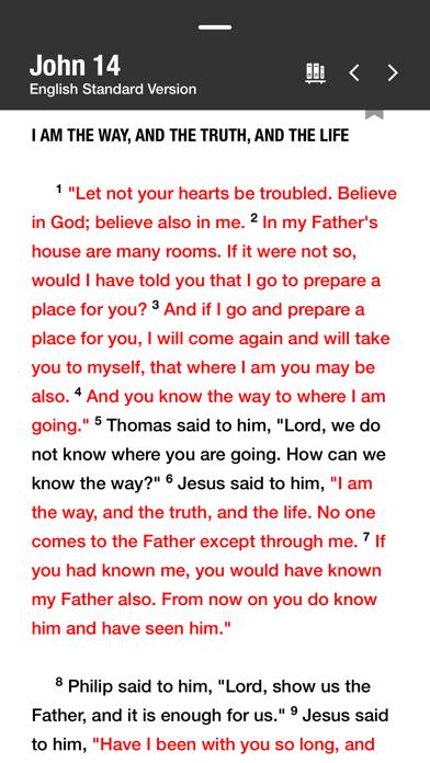 Holy Bible screenshot one