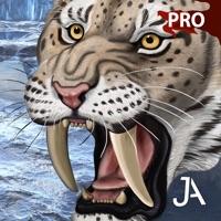 Codes for Ice Age Hunter: E-Pro Hack