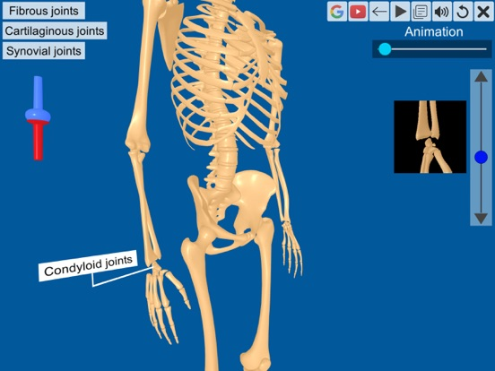 Joints: The Human Levers screenshot 10