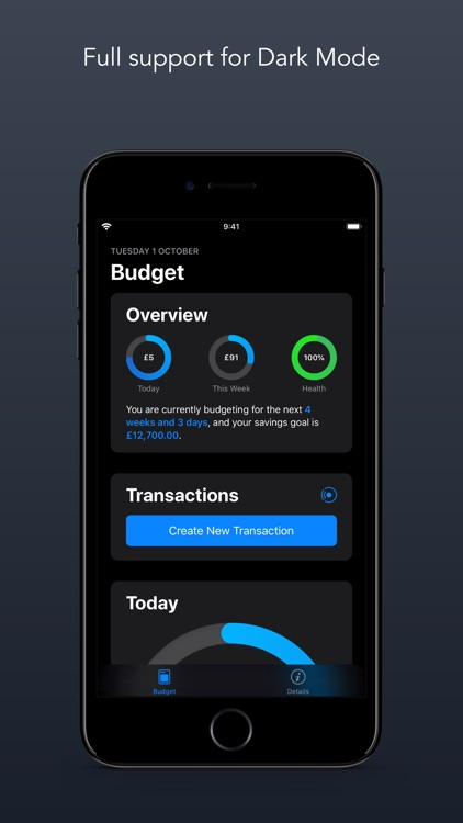 Budgeted screenshot-5
