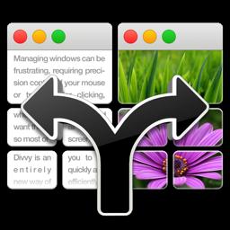 Ícone do app Divvy - Window Manager