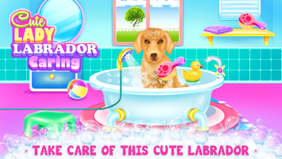 Lady Labrador Caring Screenshot