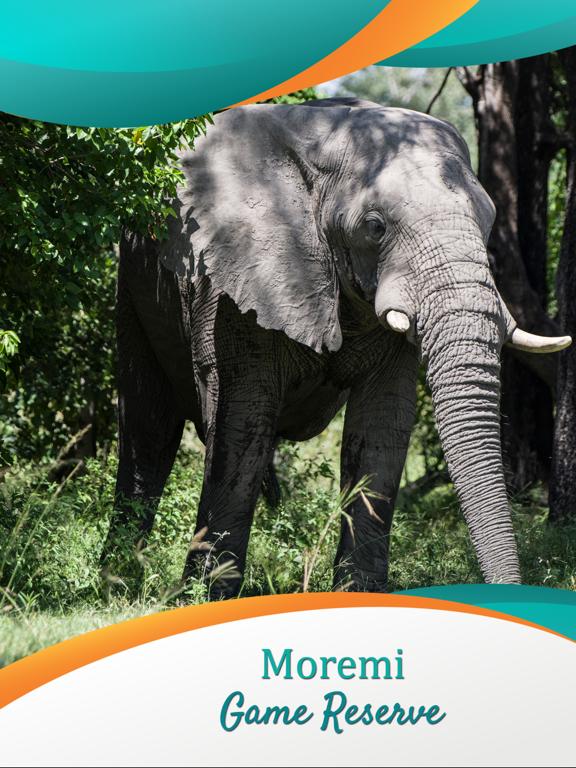Moremi Game Reserve screenshot 6