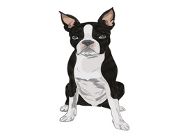 The DogBreedsTL is a small sticker, which are show the 30 Dog Breeds sticker in cartoon