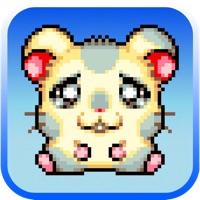 Codes for Mini Mouse Maze Escape- Zombies Gone Wild Hack