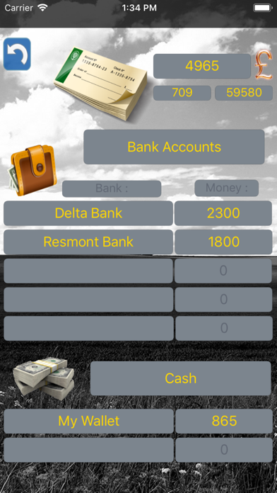 Budget Flow - Expenses, Income Screenshots