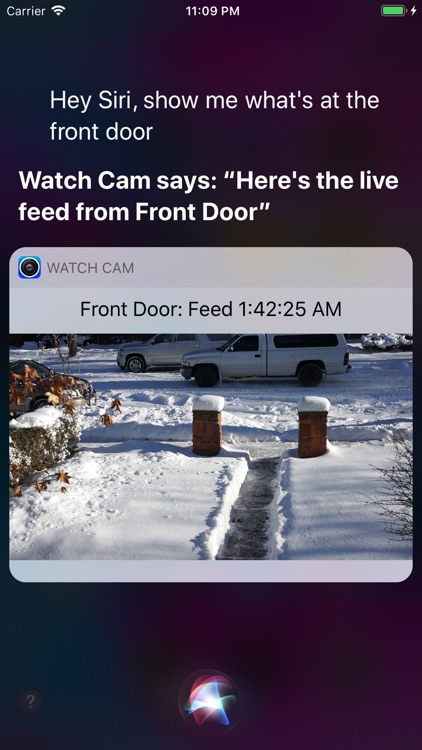 Watch Cam for Nest Cam screenshot-2