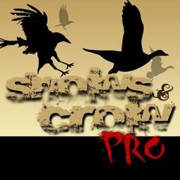 Snows & Crows Pro