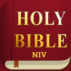 NIV Bible - Holy Audio Version