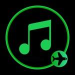 Offline Music Player