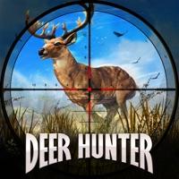 Codes for Deer Hunter 2018 Hack