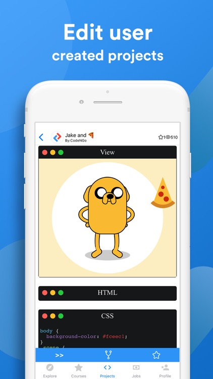 CodeNGo Academy: Learn To Code screenshot-5