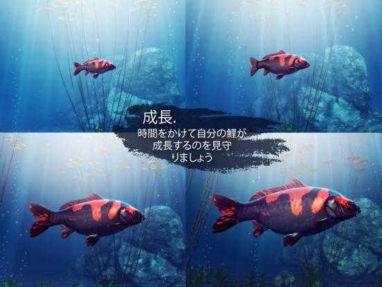 My Koiのおすすめ画像3