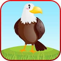 Codes for Bird Sounds Fun Learning Games Hack