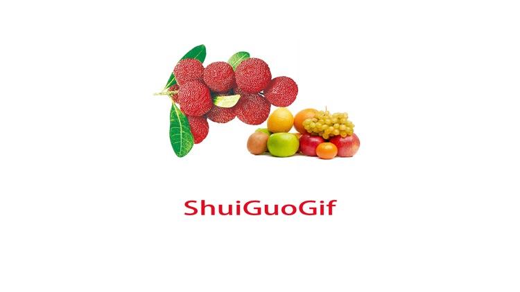 ShuiGuoGifAF
