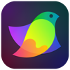 Amadine - Vector Graphics App - Belight Software, ltd Cover Art