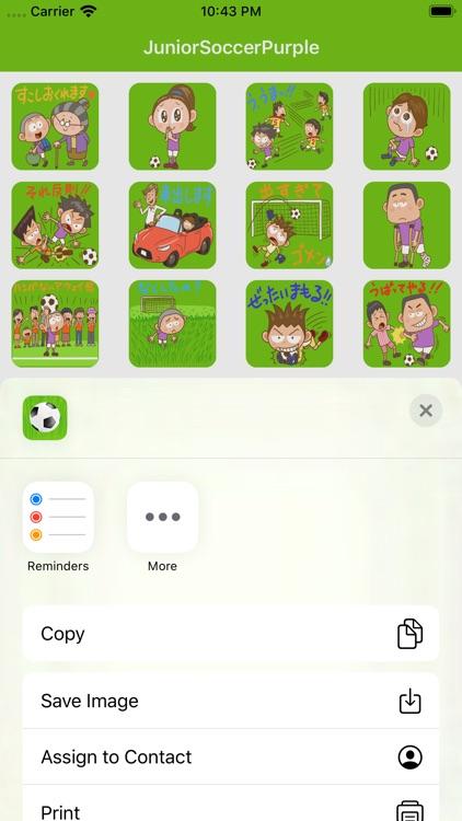 少年足球 screenshot-1