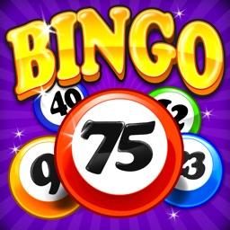Bingo Craze!