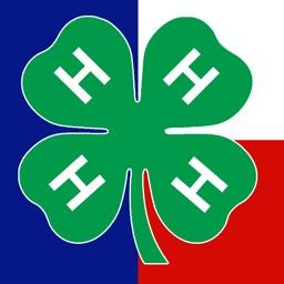Texas 4-H