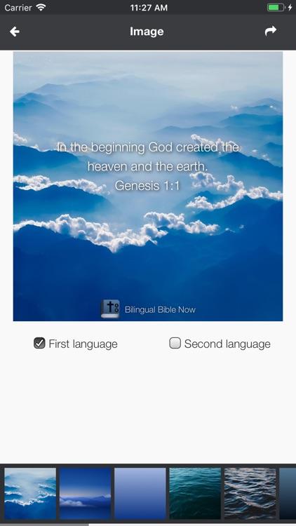 Bilingual Bible Now screenshot-5