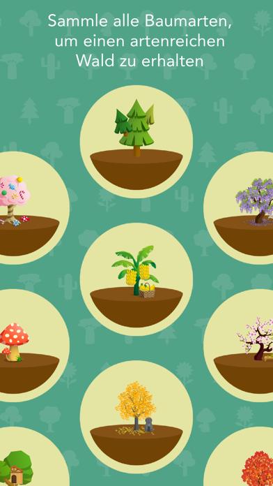 Screenshot for Forest in Switzerland App Store