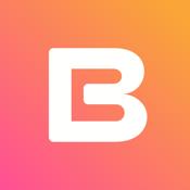 BRD - bitcoin wallet  icon