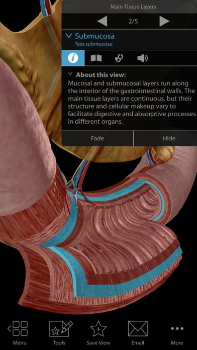 Physiology & Pathology screenshot 6