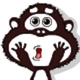 顽皮的猴子