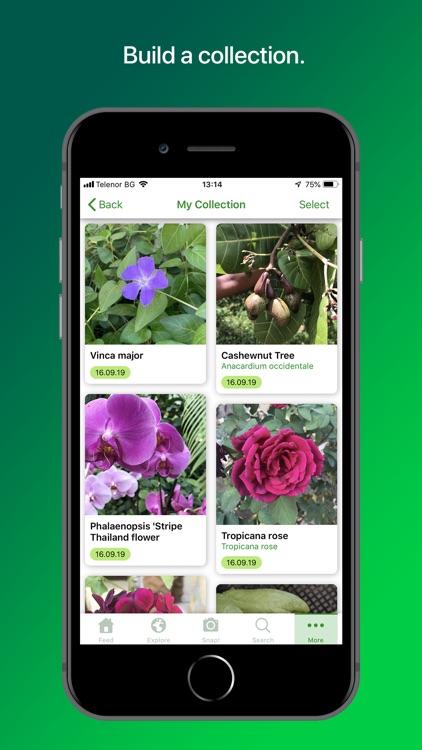PlantSnap Plant Identification screenshot-4