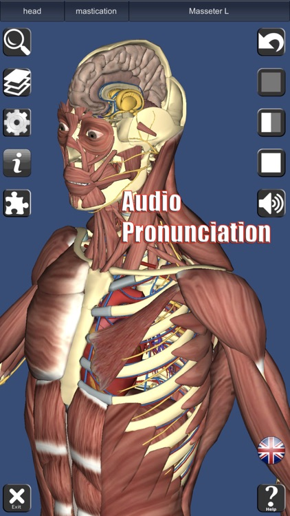 3D Anatomy screenshot-1