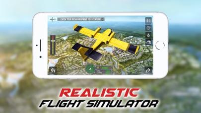 Flight Simulator 2019: Pilot-1