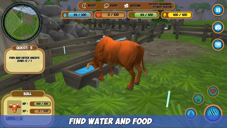 Bull Simulator screenshot-3