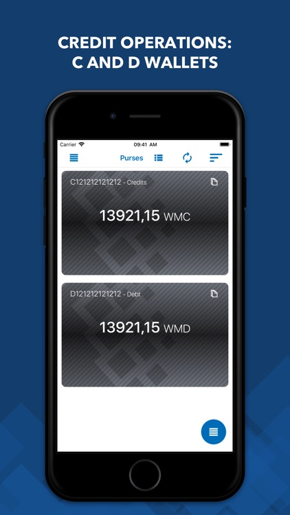 WebMoney Keeper Pro screenshot-4