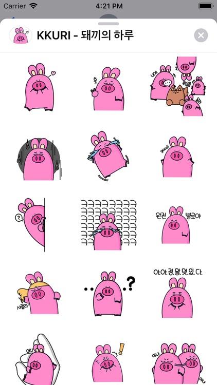 KKURI - 돼끼의 하루