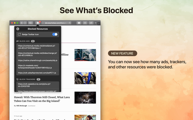 ‎1Blocker for Safari Screenshot