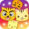 星猫广场-快乐星猫粉丝的家