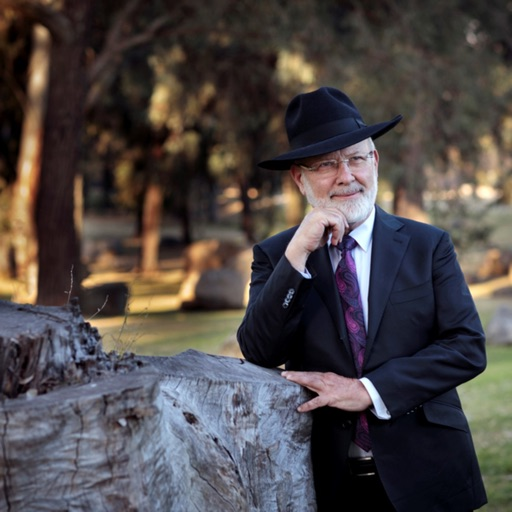 Rabbi David Lapin