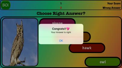 Animals Game!! screenshot #4