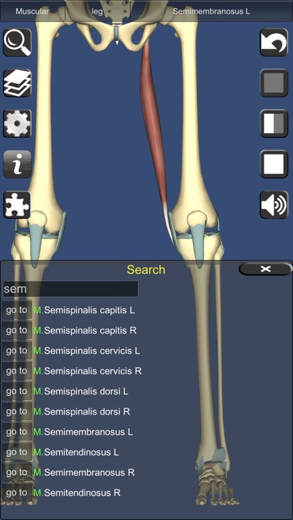 3D Anatomy screenshot-5