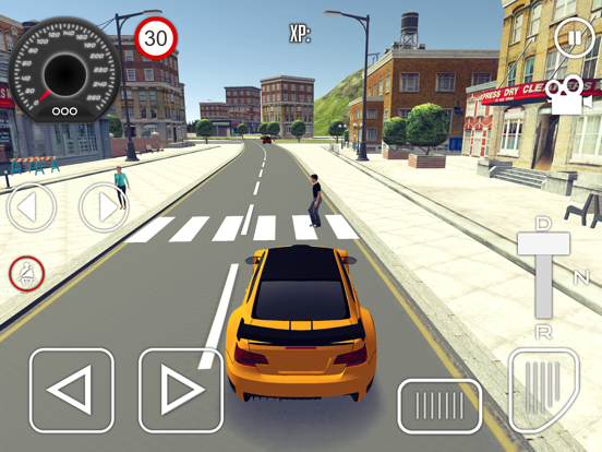 Driving School Simulator 2019 для iPad